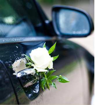Wedding Transport - Cars to Carriages