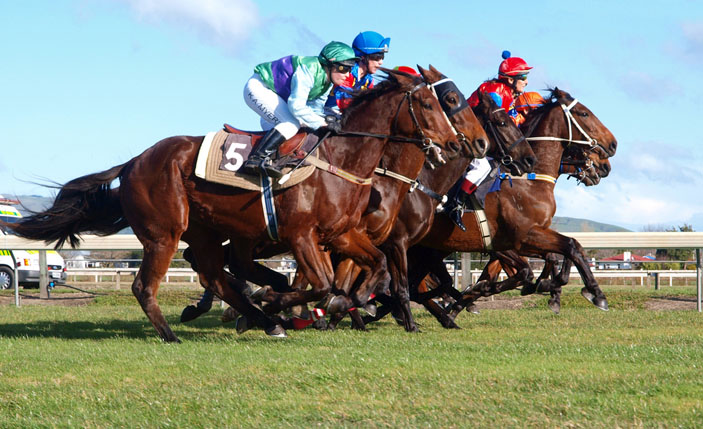 Active Stag Parties - Horse Racing