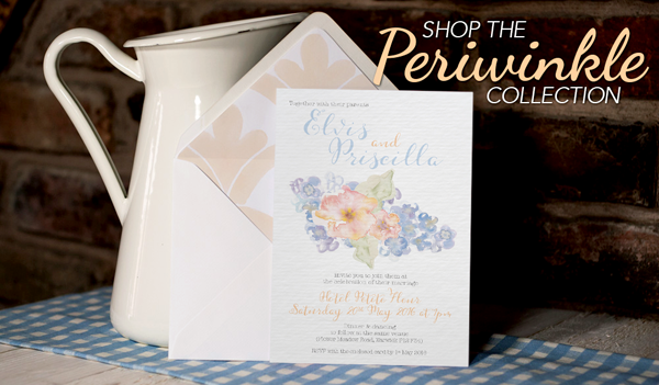 Shop-the-Periwinkle-Collection
