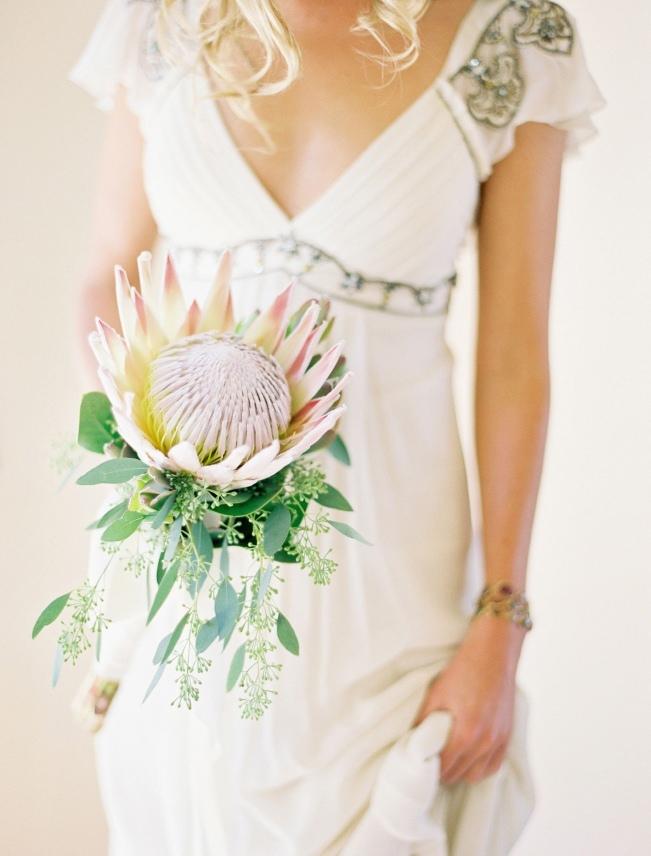 Sweet-Violet-Bride-Protea-