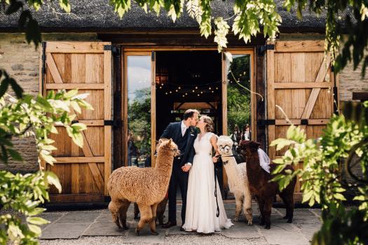 Barn Wedding Venues Near Me - WeddingPlanner.co.uk