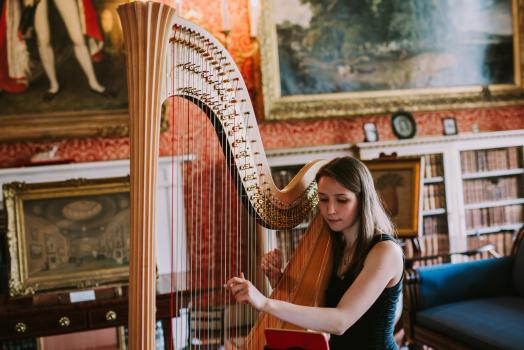 Music & Entertainment - Elinor Nicholson Harpist