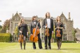 Contact Sion at Aderyn String Quartet now to get a quote