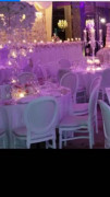 Contact Haylie at Creative event design now to get a quote