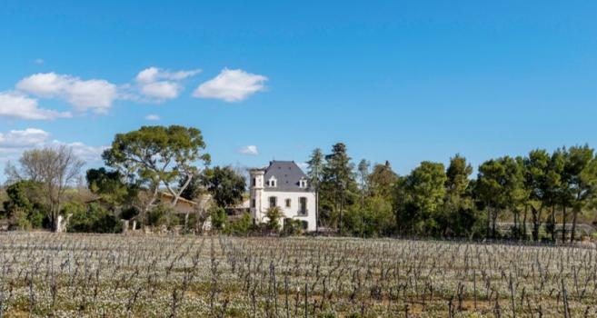 - Domaine Tarbouriech