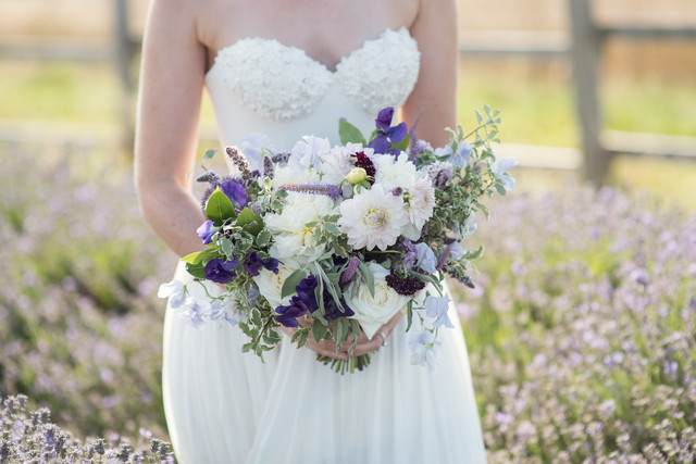 lavendar fields, bridal shoot, the events designers