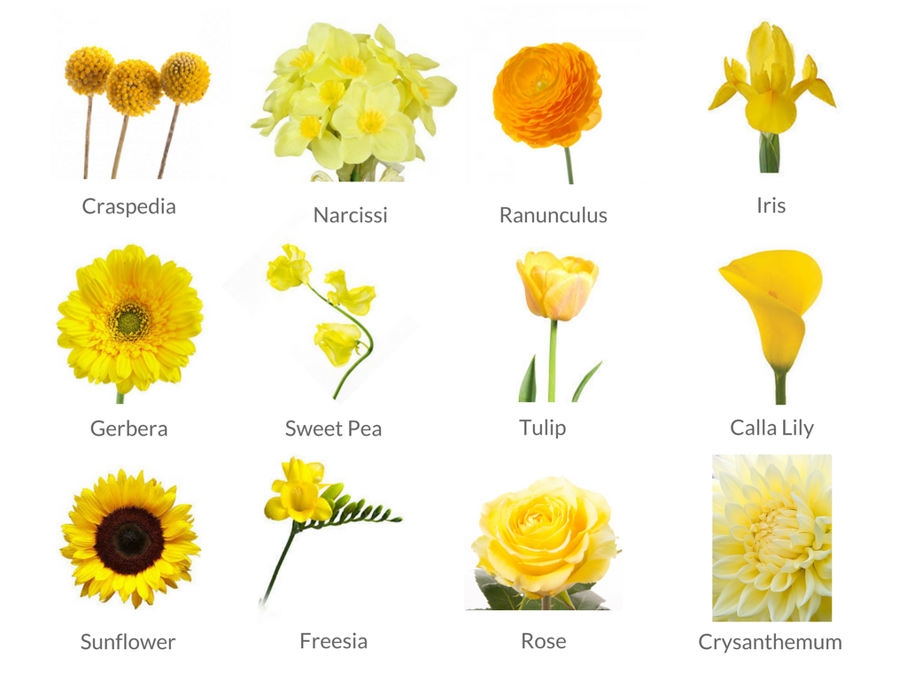Cheat sheets to spring wedding flowers weddingplanner yellow flowers mightylinksfo Gallery