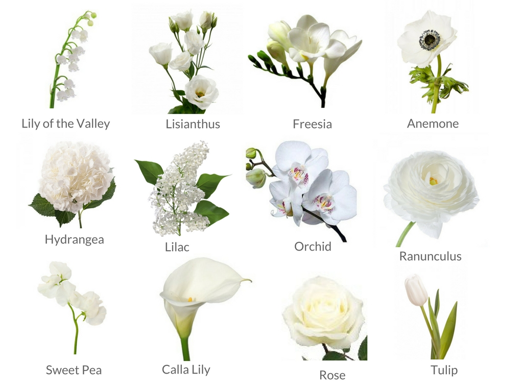 Cheat Sheets To Spring Wedding Flowers Weddingplanner Co Uk